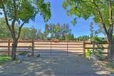 10437 Alta Mesa Road - Photo 65