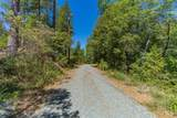 21101 Homestead Road - Photo 14