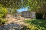 3115 Wise Road - Photo 63
