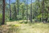 12787 Mystic Mine Road - Photo 19