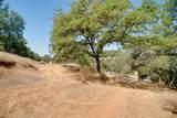 3531 Magic Morgan Trail - Photo 5