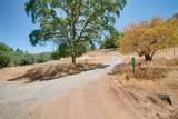 3531 Magic Morgan Trail - Photo 7