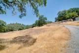 3531 Magic Morgan Trail - Photo 8