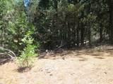 5407 Pine Ridge Drive - Photo 3