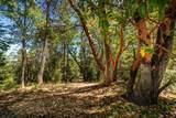 0 Volcano Trail - Photo 1