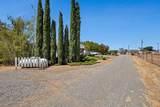 18643 Lone Oak Lane - Photo 43