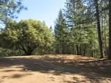 26355 Barb Wire Lane - Photo 3