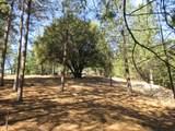 26355 Barb Wire Lane - Photo 30