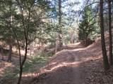 26355 Barb Wire Lane - Photo 37