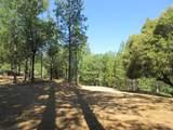 26355 Barb Wire Lane - Photo 4