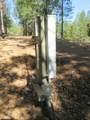 26355 Barb Wire Lane - Photo 6