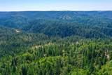 12255 Pawnee Trail - Photo 18