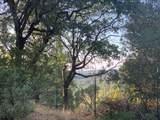 3379 Oro Pass Road - Photo 18