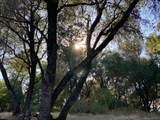 3379 Oro Pass Road - Photo 21