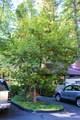 334 Gracie Road - Photo 32