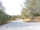 2 Rattlesnake Bar Road - Photo 27