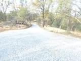 2 Rattlesnake Bar Road - Photo 9