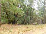 17686 S. Mace Drive - Photo 7