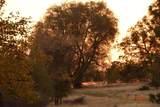 2540 Mine Road - Photo 2