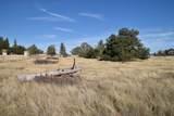 2540 Mine Road - Photo 9