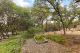 14196 Sun Forest Drive - Photo 24