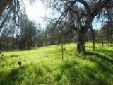 0 Campo Seco Road - Photo 1