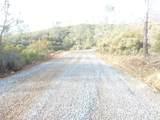 0 Rattlesnake Bar Road - Photo 22