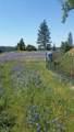 17252 Shake Ridge Rd - Photo 15