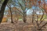 14896 Woodland Loop - Photo 35