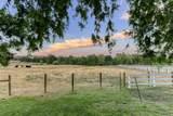 3730 Mccourtney - Photo 77