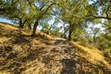 0 Upper Los Berros Road - Photo 10