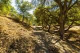 0 Upper Los Berros Road - Photo 16