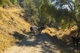 0 Upper Los Berros Road - Photo 8