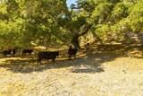 0 Upper Los Berros Road - Photo 9