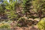 145 Hidden Creek Drive - Photo 88