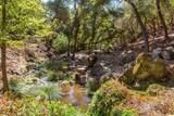 145 Hidden Creek Drive - Photo 89