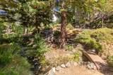 145 Hidden Creek Drive - Photo 90