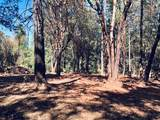 23161 Red Corral Road - Photo 12