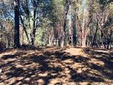 23161 Red Corral Road - Photo 14