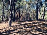 23161 Red Corral Road - Photo 17