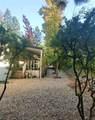 10100 Hidden Springs Drive - Photo 6