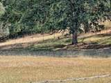 7930 State Hwy 20 - Photo 5