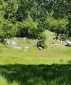 15939 Dry Creek Lane - Photo 1