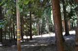 6620 Omo Ranch Road - Photo 14