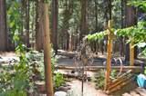 6620 Omo Ranch Road - Photo 20
