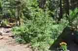 6620 Omo Ranch Road - Photo 25