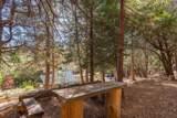 20001 Pine Drive - Photo 68
