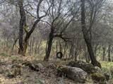 22191 Deer Trail Court - Photo 11
