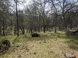 22191 Deer Trail Court - Photo 12