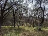 22191 Deer Trail Court - Photo 2